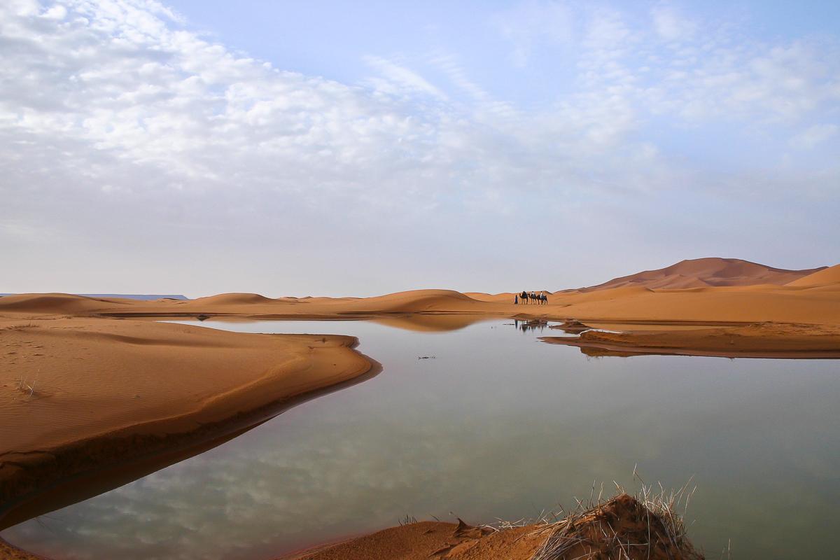 Travel into the Sahara Desert