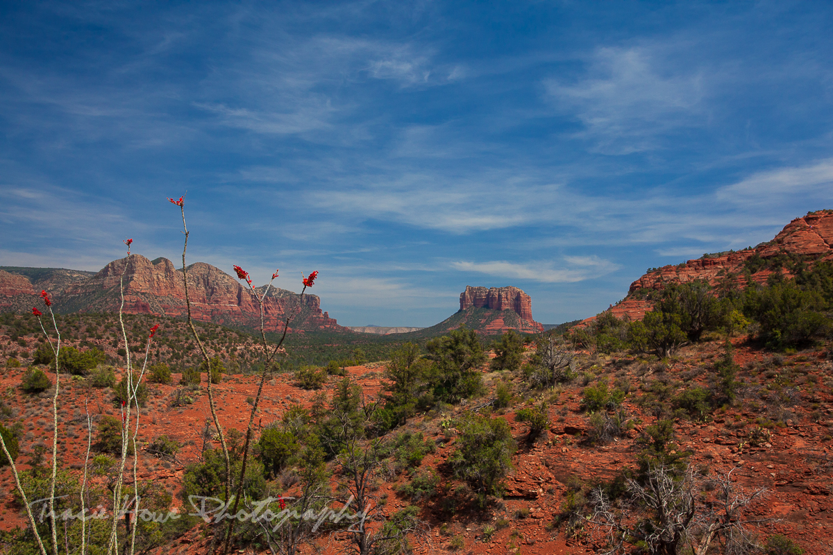 Hiking the Baldwin trail in Sedona Arizona