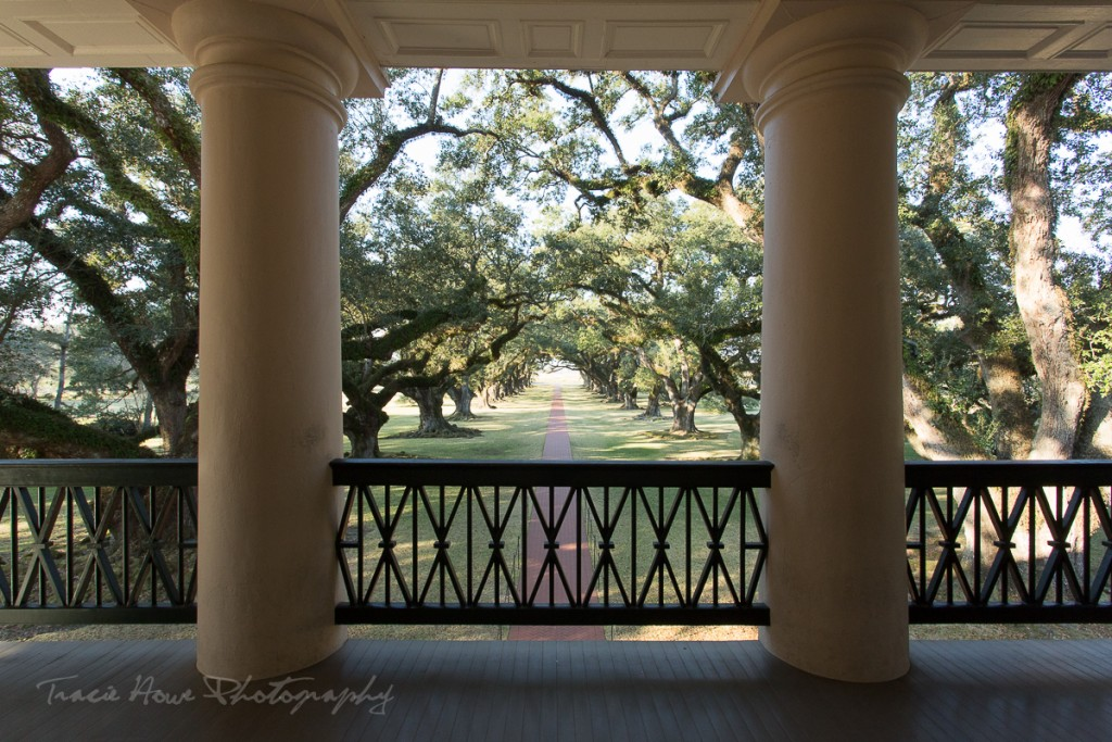 Day trip from New Orleans to Oak Alley Plantation