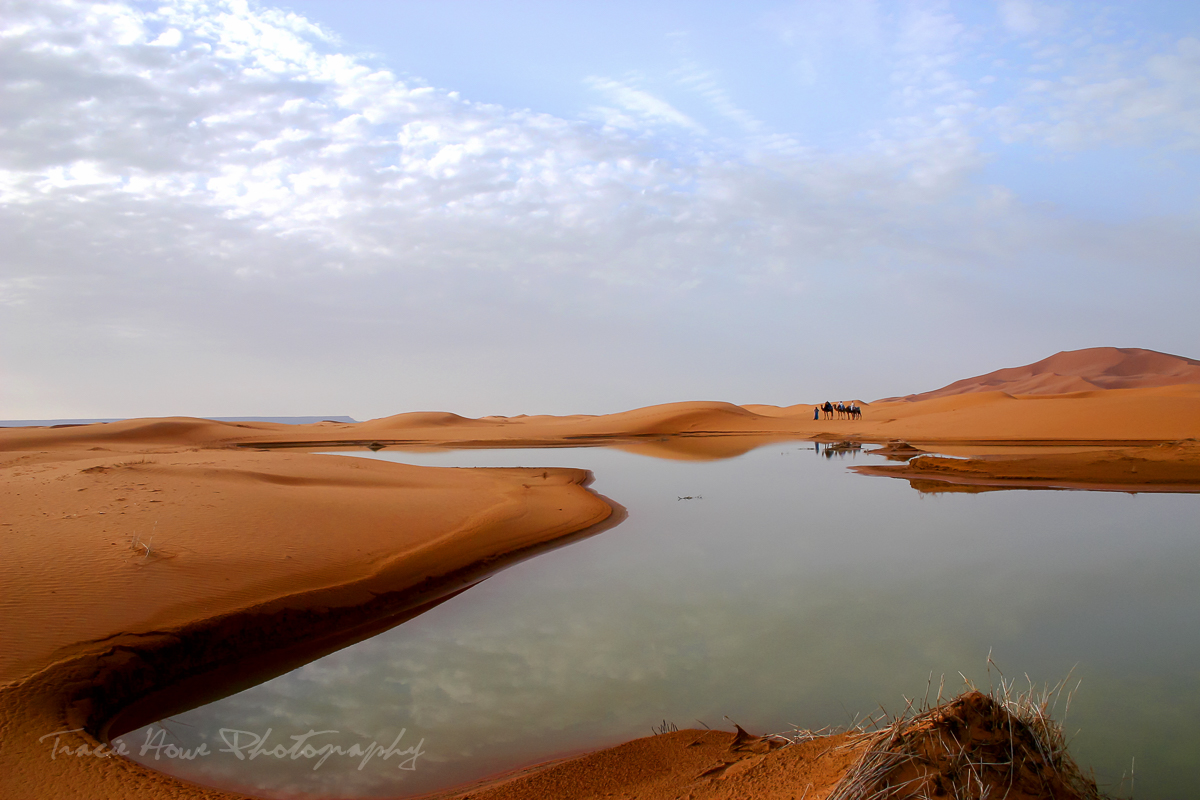 photo of Sahara Desert
