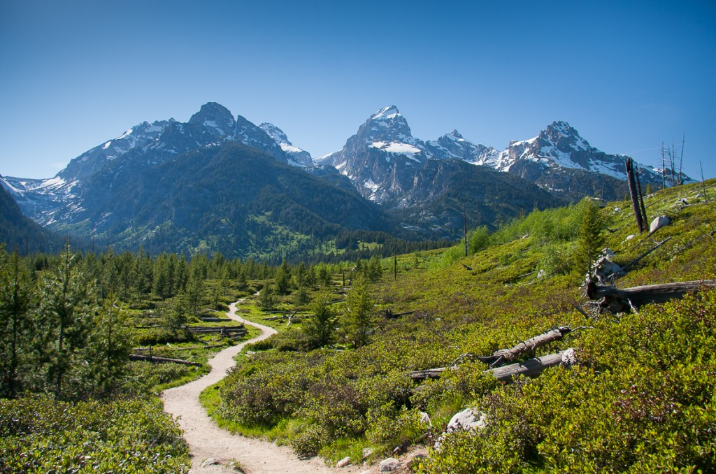 Take a hike in Grand Teton National Park