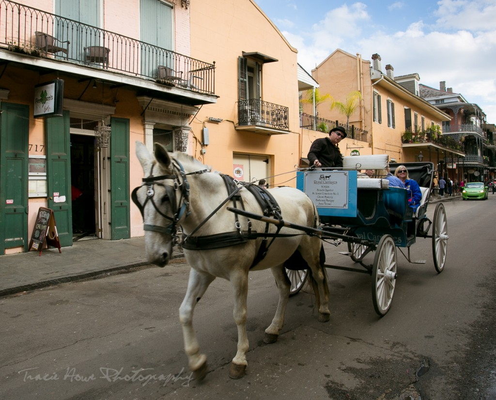 New Orleans transportation options