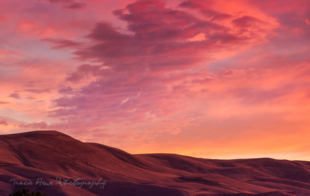 Golden hour at Palouse