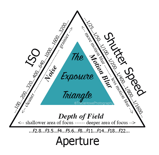 The Exposure Triangle | Tracie Travels