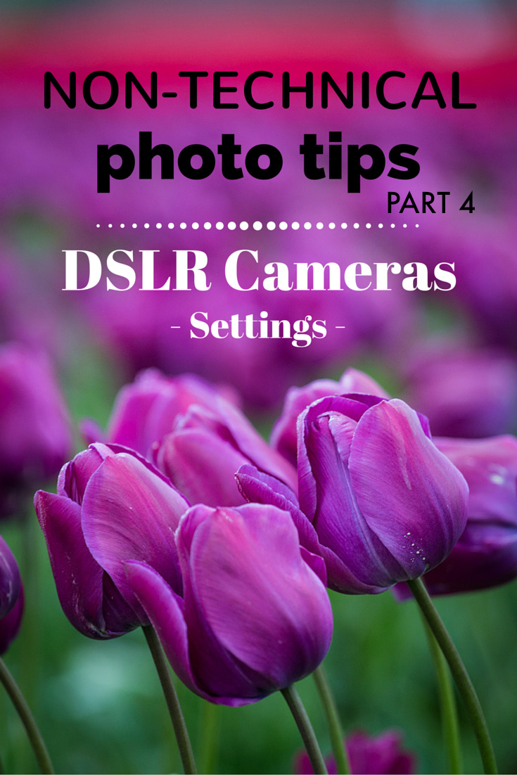 Non-technical photography tips for DSLR cameras - settings | Tracie Travels