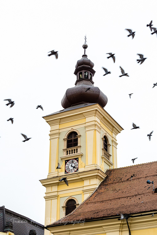 Best places for photography in Transylvania