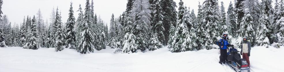snowy meadow pano Union Gap