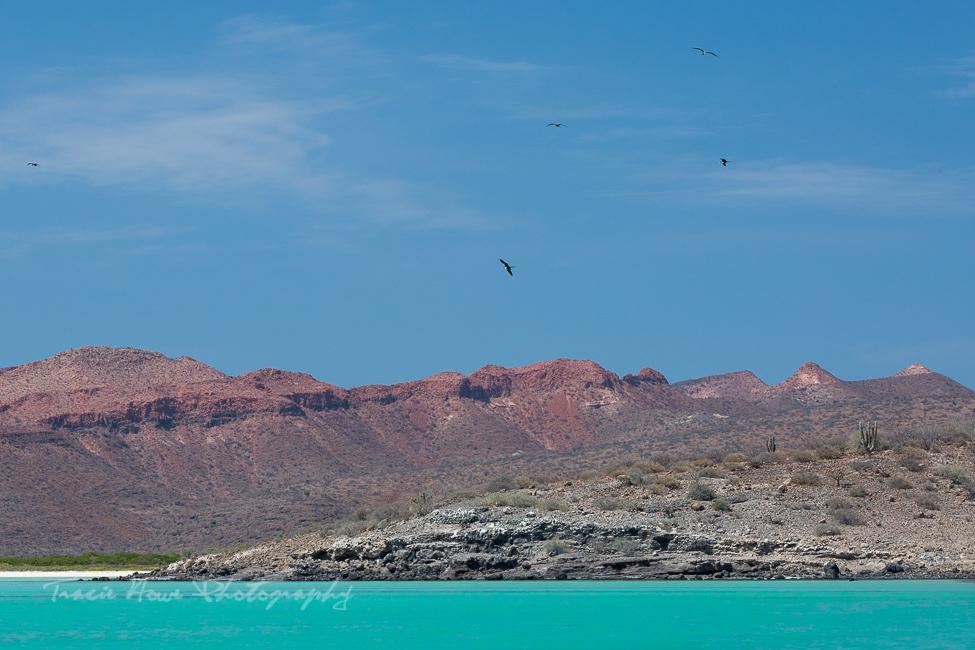 Espíritu Santo Island Baja