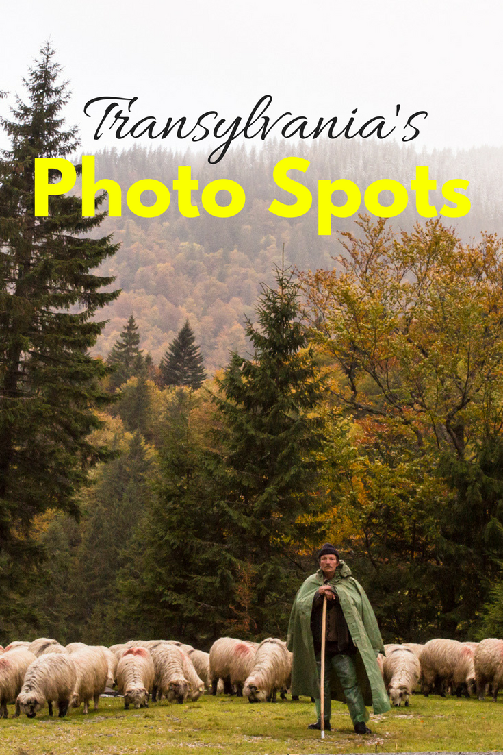 Top photo spots in Transylvania | Tracie Travels