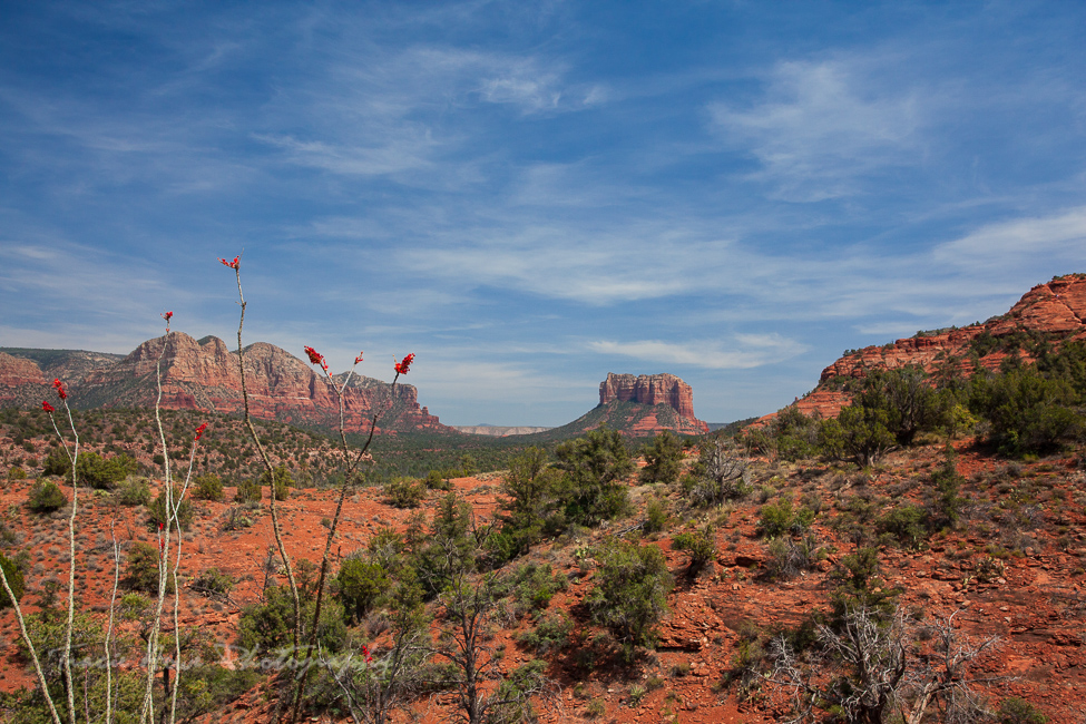 Best places for photography in the Southwest - Sedona Arizona