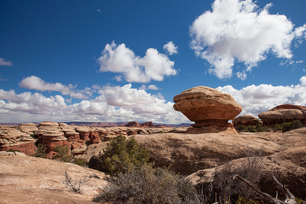 Best places for photography in the Southwest - Canyonlands National Park