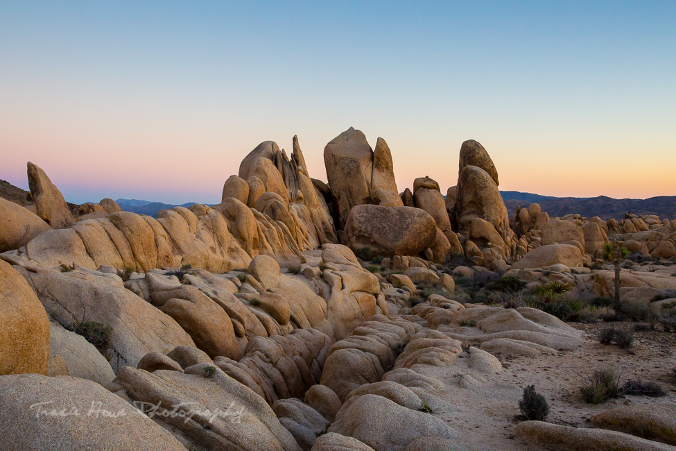 Best places for photography in the Southwest - Joshua Tree