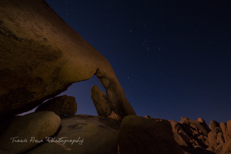 Best places for star photography in the Southwest - Joshua Tree