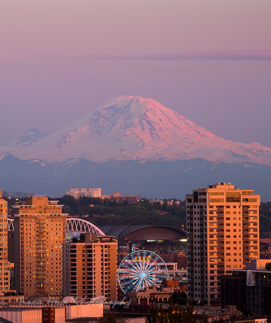 Best Mt. Rainier viewpoint in Seattle