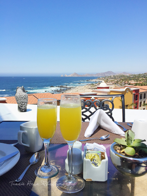 Hacienda Encantada brunch view