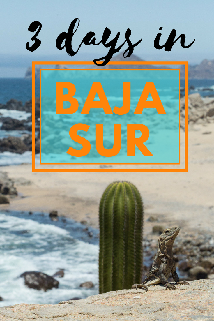 What to do with 3 days in Baja Sur? | Tracie Travels