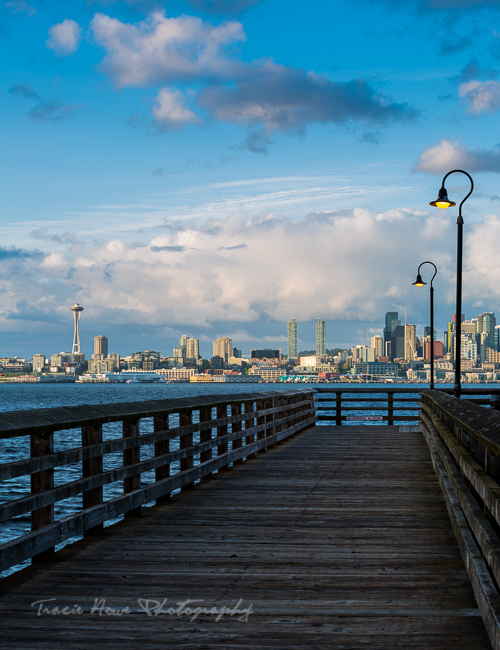 Seattle city viewpoint