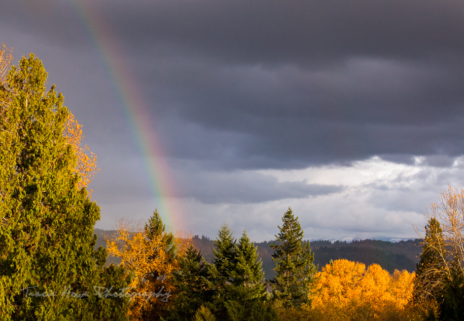 rainbow over Snohomish, Seattle NorthCountry