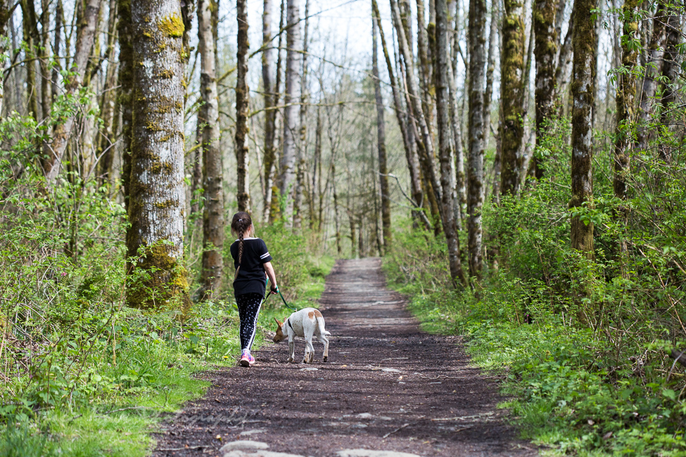 A trail in Snohomish, Seattle NorthCountry